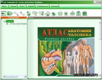 Атлас анатомии фрэнка неттера