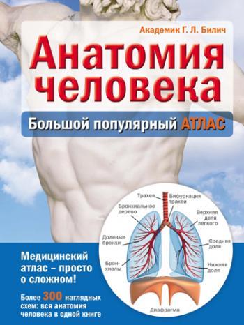 Скачать серия физиология