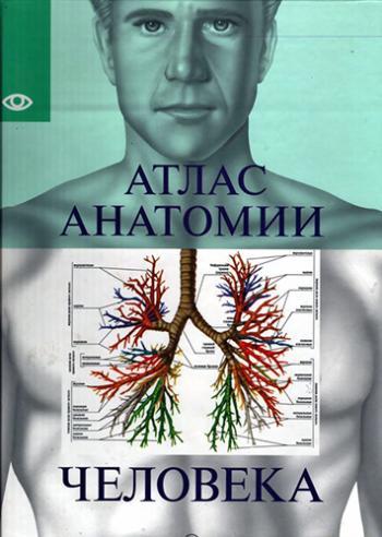 Атлас анатомии человека надольская н.в скачать
